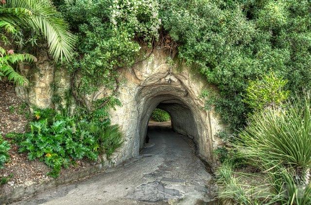 Il tunnel nel parco